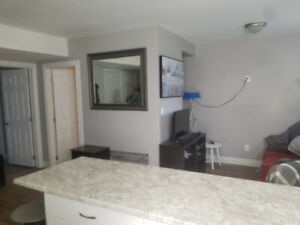 Newly renovated 1 bdr. apt. avail. Dec.1st $1175 all incl.