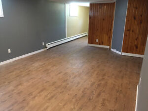 Bright, newly renovated basement apartment for rent!