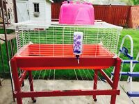 Rabbit cage with stand including water bottle