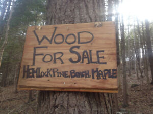 need firewood?  Have chainsaw? FREE WOOD, if you help me