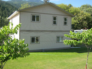 Newer HOME  in Falkland BC Right Downtown with suit