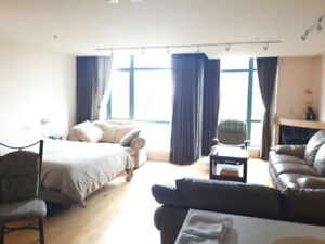 Studio in Coal Harbour Furnished