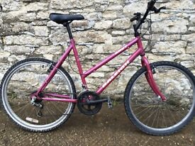 SERVICED LARGE RALEIGH BIKE - FREE DELIVERY TO OXFORD!