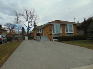 basement apartment in bayview and Major Mackenzie