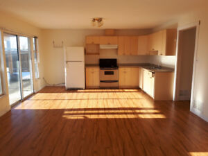 Large Basement for Rent in Abbotsford