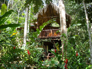 Vacation in Belize this Winter!