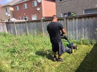 Same day Lawn Cutting Services at reasonable prices 647-712-5231