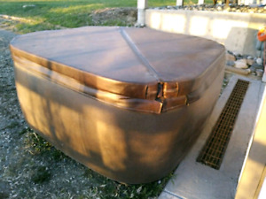 2-3 person DREAM MAKER SPA HOT TUB needs $500 spa pack As Is