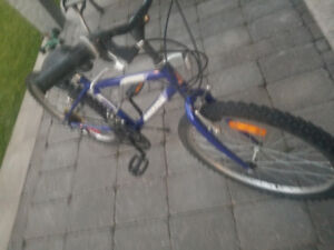 Raleigh Tracker 15-speed bicycle - Like New! 20 inch Tires