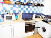 2 NICE BIG DOUBLE ROOMS IN THE SAME FLAT, CLOSE TO CANARY WHARF AND ISLAND GARDENS AREA