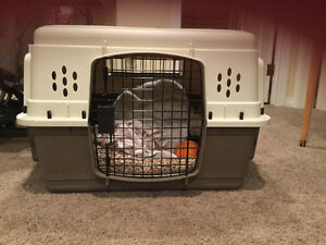 Medium size Dog Kennel for sale!