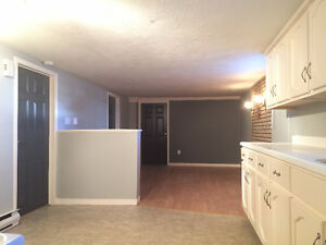 NICE COZY BASEMENT APT. near UdeM (Internet/cable included)