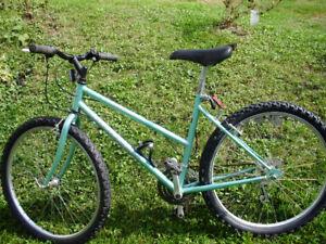 Bonelli ladies mountain bike