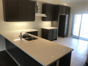 Brand New Townhouse 3+1 Den For Rent