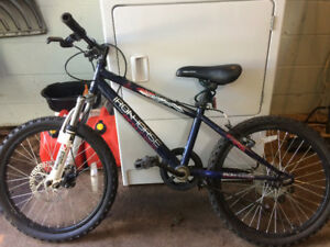 Boys iron horse bicycle 20 ""