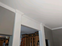 Drywall and crackfilling specialist