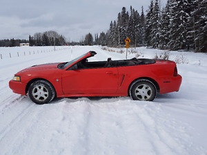 2000 Ford Mustang red Convertible Edson AB