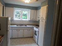 newly renovated short walk to MUN 3 bedroom avail