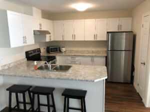 2 Bedroom Condo/Apartment for Rent