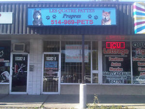 PROFESSIONAL DOG AND CAT GROOMING - 30% DISCOUNT  10382B Gouin B