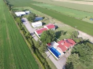 OWN YOUR OWN DOG KENNEL WITH AMPLE ACREAGE  $1 475 000