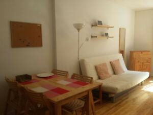 lease transfer 2 1/2 in downtown for $795 (downtown montreal)