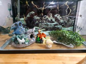 Aquarium 10 gal