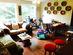 2 bedroom South End Apartment Available December 1, 2017