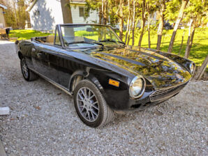 1981 Fiat Spider (LOW KMS)