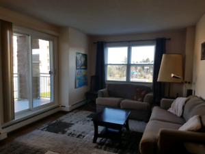 3 Bedroom in Clayton Park West, 5 appliances