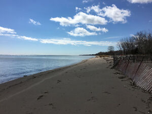 Build Your Lake Front Dream Home just outside Rondeau Park!