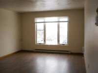 Upgraded Gorgeous 2 BR on top floor - close to Jones Lake & Down