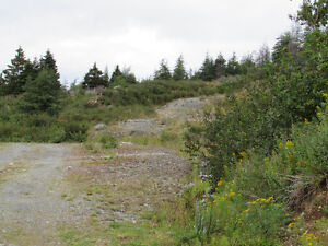 1 MILLVILLE ROAD, AVONDALE..  SECLUDED..1 ACRE LOT St. John's Newfoundland image 15