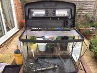 Fish tank 64 litres fish box. Gravel, fluval U2 filter, heater included.