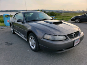 2003 ford mustang!!!