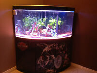 Corner Fish Tank With Bow Front