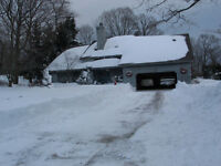 Yard Clean Ups / Snow Removal