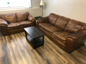 Leather Couch and Loveseat (100%)