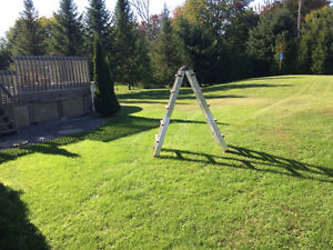 9' échelle professionelle/ professional step ladder