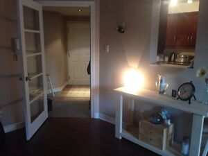 Gorgeous Condo For Rent