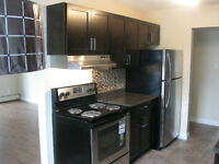 10114 77 Ave, South Side, Close to U of A, Available Now!!!