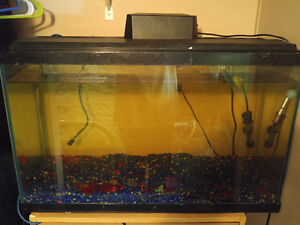 30 gal fish tank with 10 hybrid cichlids all acessories