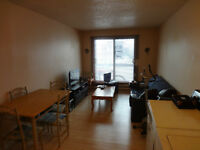 3 1/2 a louer / for rent
