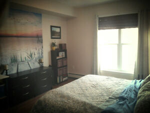 Apartment Share Larry Uteck
