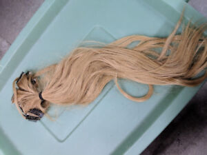 15+ Blonde Hair Extensions (Real Authentic Hair)