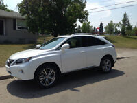 2014 Lexus RX PREMIUM TECHNOLOGY PACKAGE SUV, Crossover