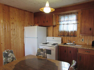 384 TURKSWATER ROAD, MAKINSONS..COTTAGE COUNTRY St. John's Newfoundland image 13