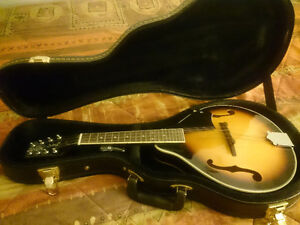 Mandolin with hard locking case
