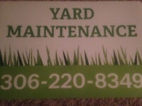 YARDWORK - NEED A HAND - SNOWBLOWING