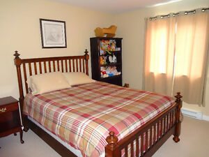 39 Greeleytown Road - CBS - Move in for Christmas St. John's Newfoundland image 8